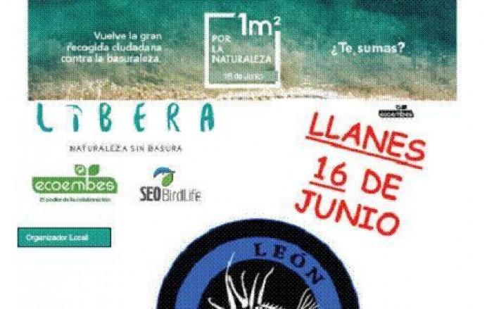 Sábado 16 de junio: Jornada contra la basuraleza en Llanes