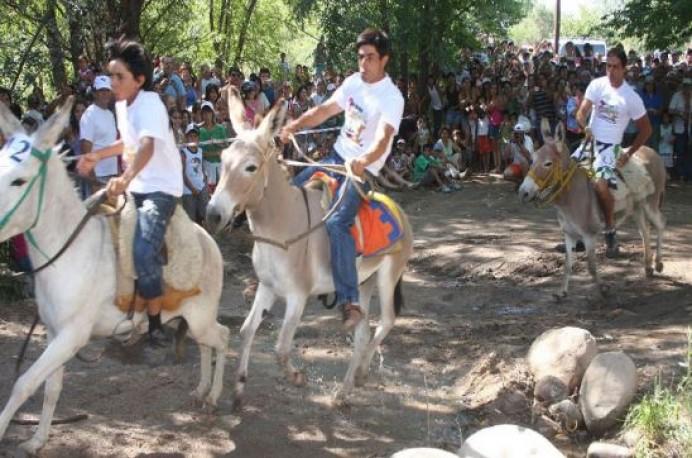 EQUO, denunciamos el sufrimiento animal en la carrera de burros de Pañeda (Siero)