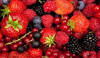 Cursillos sobre Frutos Rojos y Kiwi