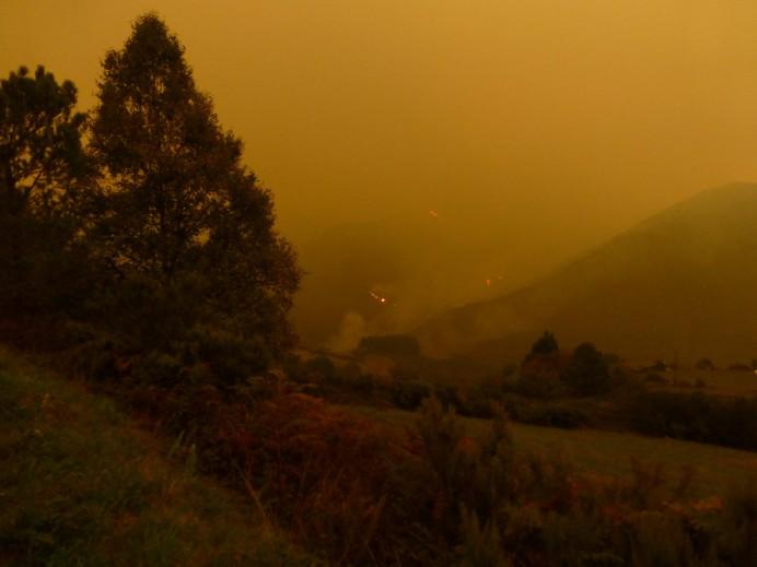 No se pueden permitir mas oleadas de incendios provocados como los que estamos viviendo