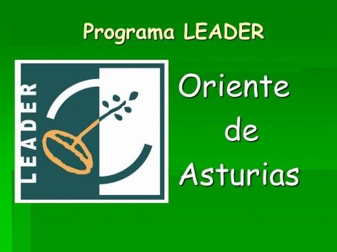 Información sobre Ayudas Leader