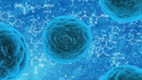 Asturias acogerá un importante encuentro de Microbiología clínica
