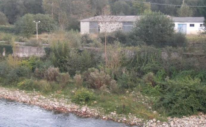 Cancelan el disparatado proyecto de la cría de esturiones en el río Piloña