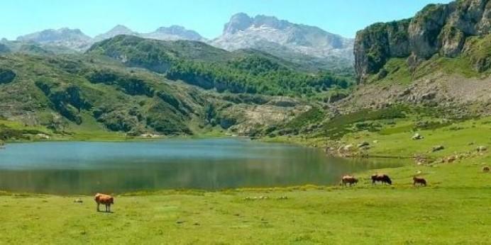 IU presentará una PNL para modificar el modelo de gestión del Parque Nacional de los Picos de Europa