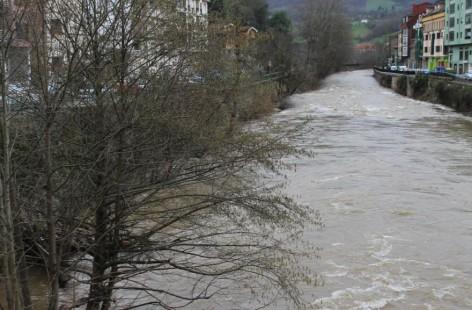 Ecologista de Asturias: Reclamamos el fin del proyecto de cría de esturiones en la cuenca del río Sella