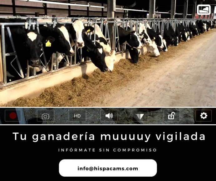 Instalación de equipos de vigilancia en ganaderías