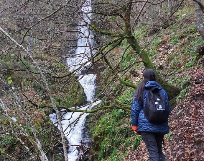 Hayedo de Montegrande - Cascada del Xiblu
